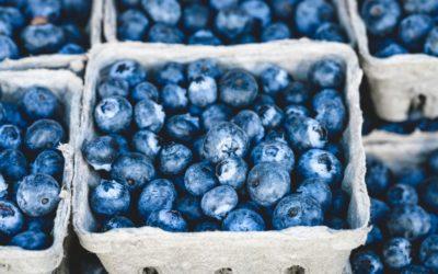 Ένα superfood στο ψυγείου σου. Μύρτιλα για ευεξία, μακροζωία και ασπίδα ενάντια στις ασθένειές